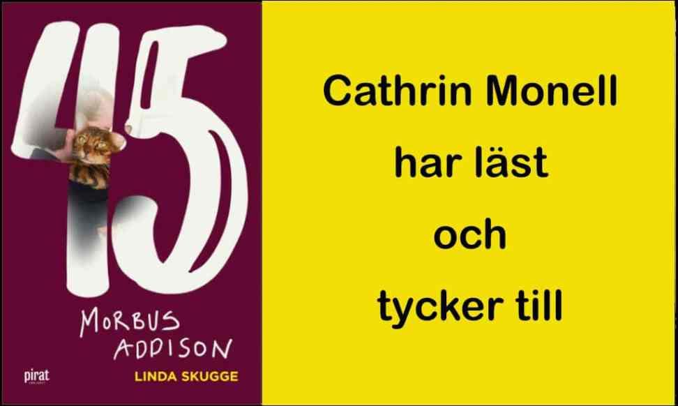 Nytt på SkrivarSidan: 45 – Morbus Addison av LindaSkugge